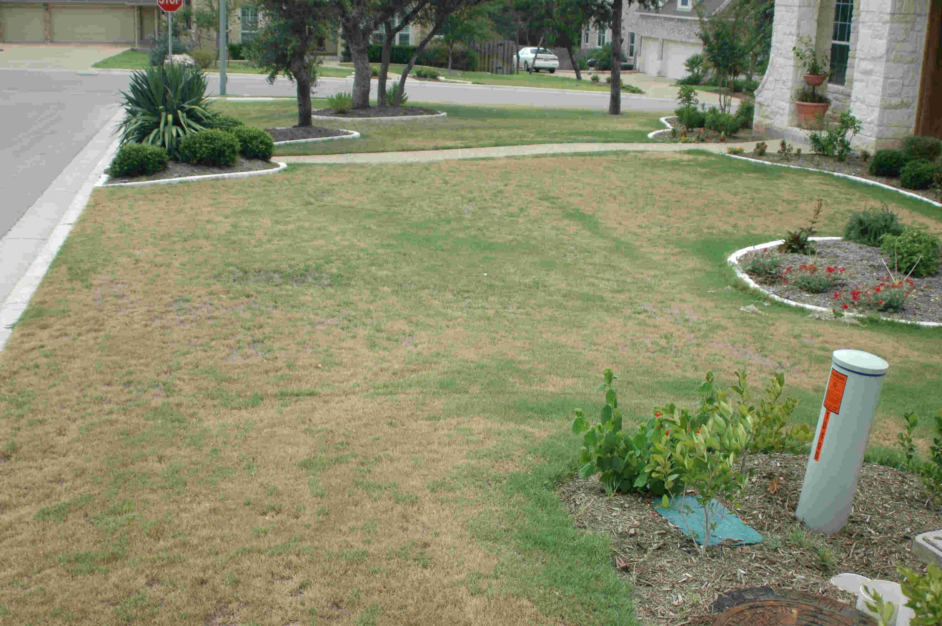 Awesome Lawn Care Austin Tx